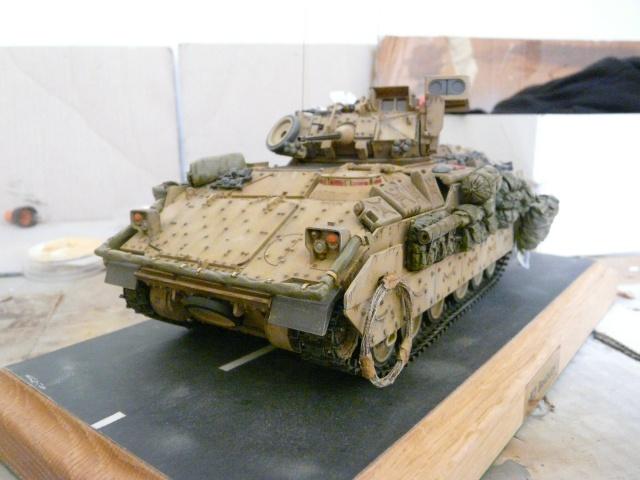 M2 Bradley Tamija 1-35  - Page 2 P1080424