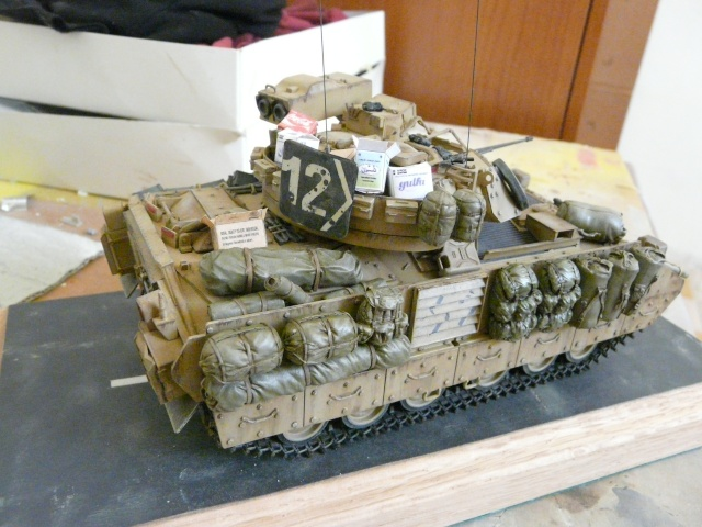 M2 Bradley Tamija 1-35  - Page 2 P1080427