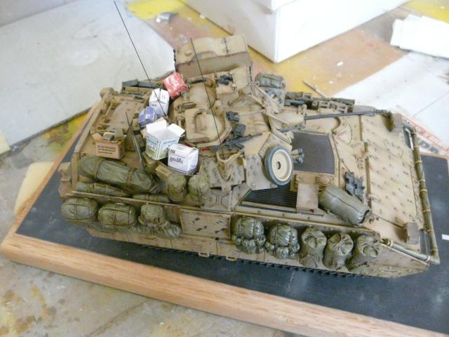 M2 Bradley Tamija 1-35  - Page 2 P1080428