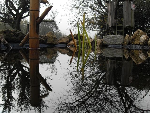Votre photo pour Décembre 2009 - Page 2 Sdc12013