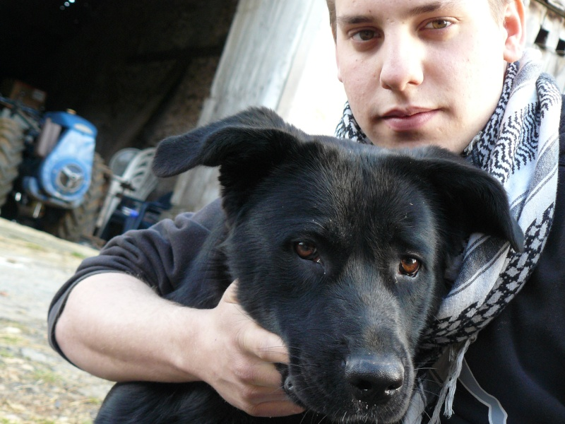 Thomas et sa chienne... P1020210