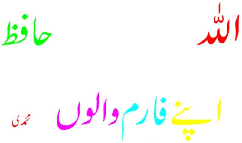 Allah Hafiz Untitl10
