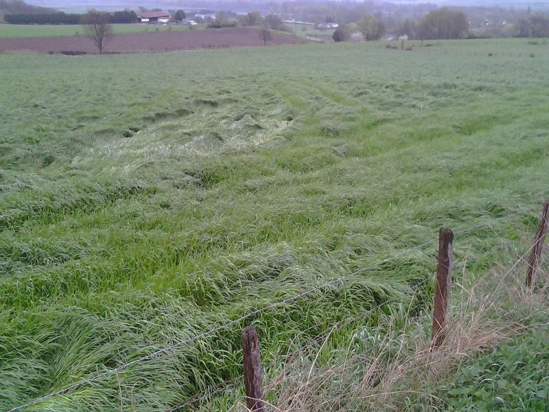 Un petit bout d'Auvergne - Page 2 Photo014