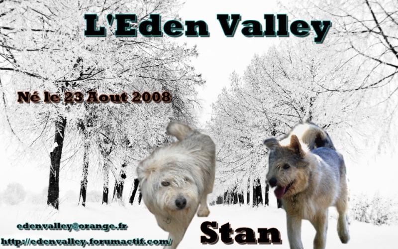 URGENCE chiens à placer  L EDEN VALLEY.ASSOCIATION (26) 54145210