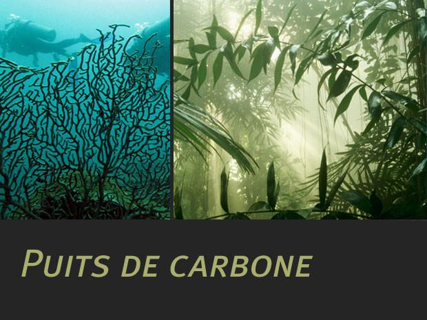"""Débat : """"Taxe Carbone"""" Puits-10"""