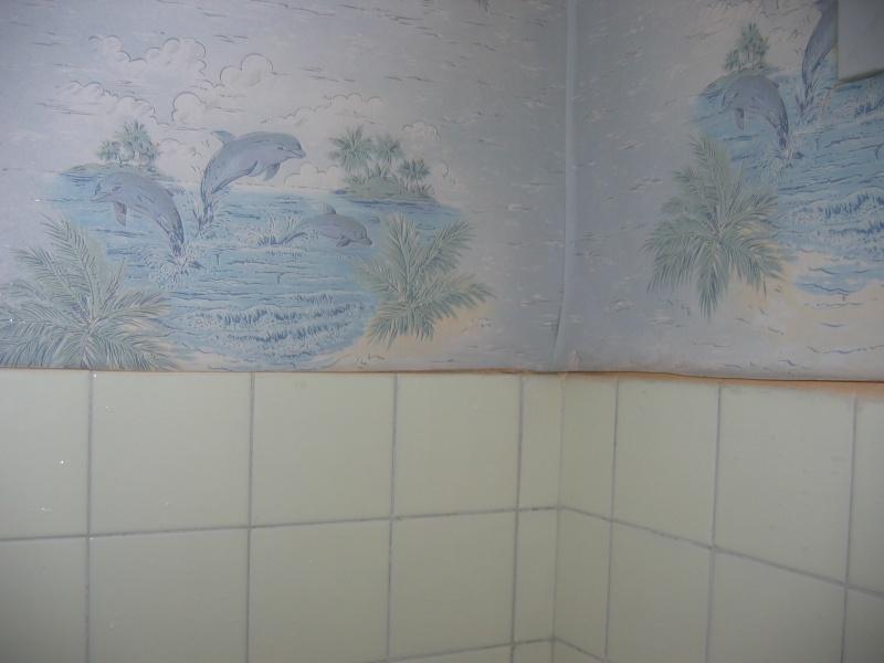 il faut que je refasse ma salle de bain urgement Img_0027