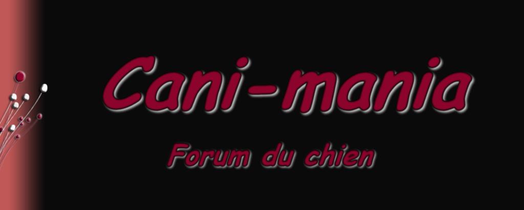 Cani-mania