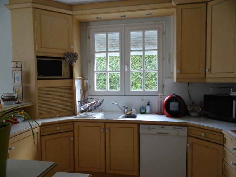 Que pensez-vous... repeindre mes éléments de cuisine  Dsc00211