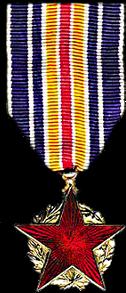 La médaille française des blessés de guerre Medail15