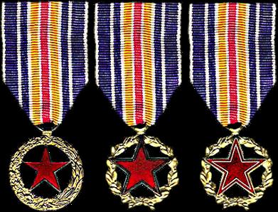 La médaille française des blessés de guerre Medail17