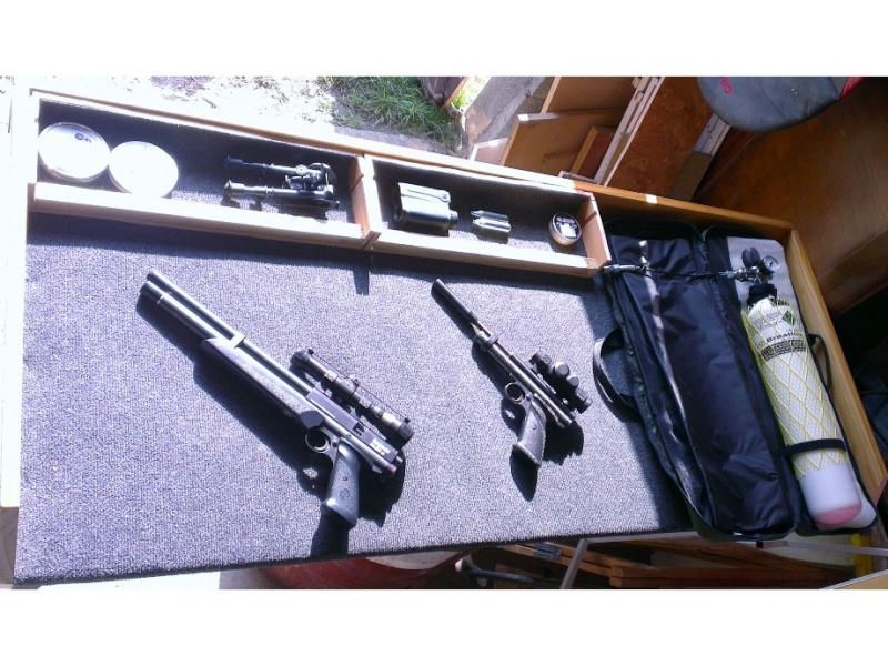 vidéo benjamin marauder pcp pistol  - Page 2 _natur10