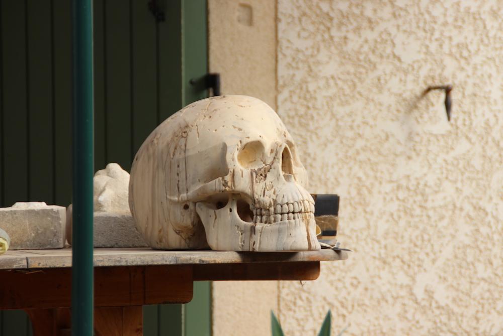 Crâne en micocoulier échelle 2 Img_2111