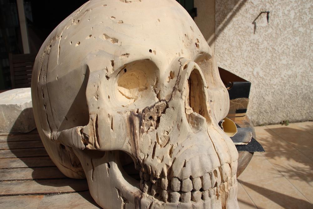 Crâne en micocoulier échelle 2 Img_2114