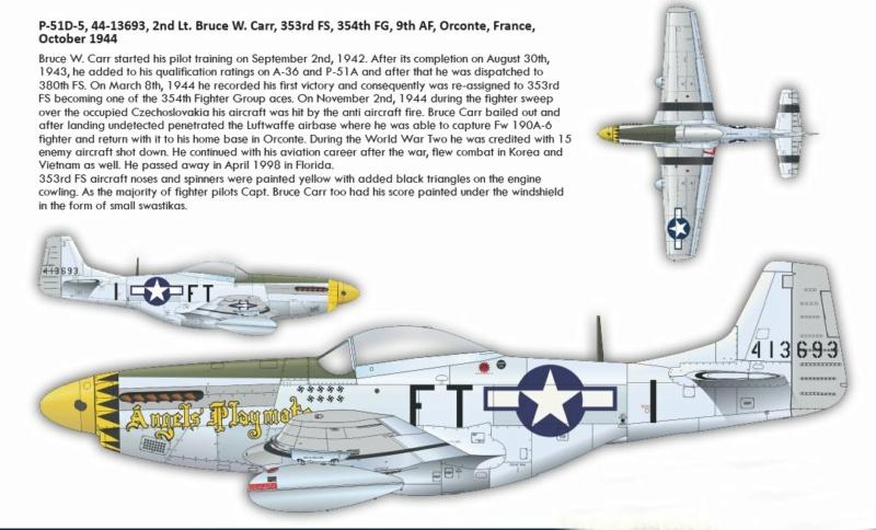 NORTH AMERICAN P-51 MUSTANG P511010