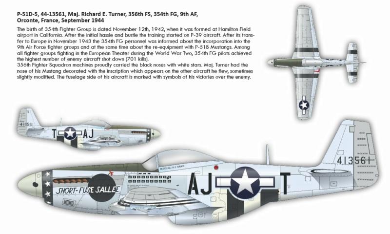 NORTH AMERICAN P-51 MUSTANG P511210