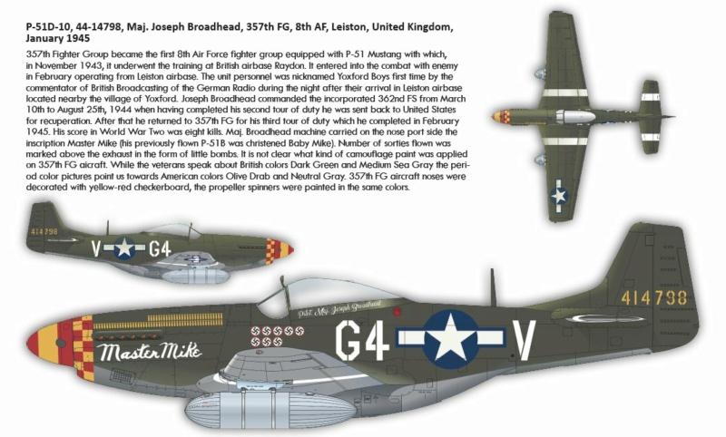 NORTH AMERICAN P-51 MUSTANG P511310