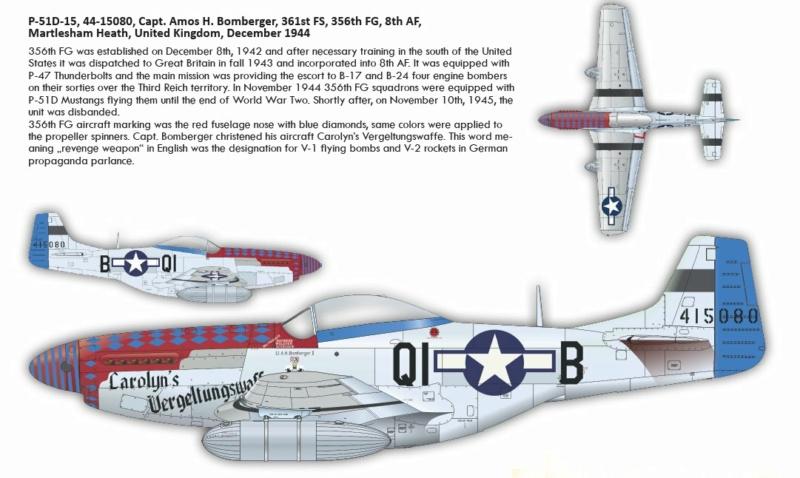 NORTH AMERICAN P-51 MUSTANG P511410