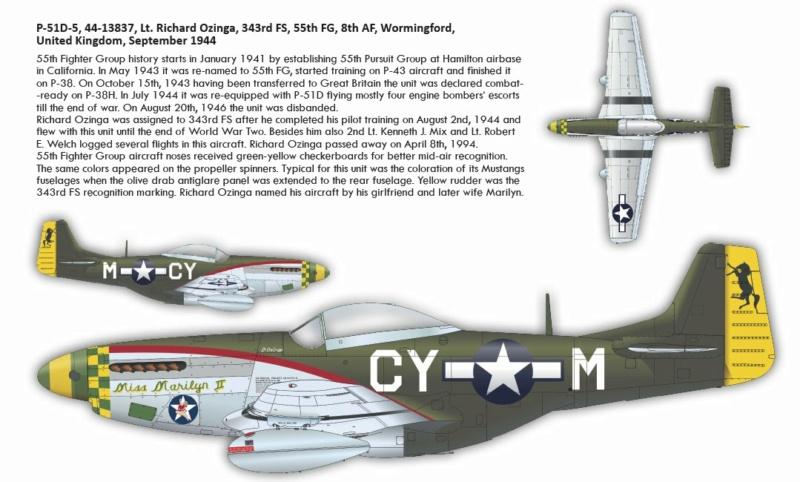 NORTH AMERICAN P-51 MUSTANG P511510