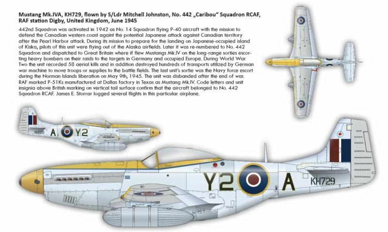 NORTH AMERICAN P-51 MUSTANG P51211