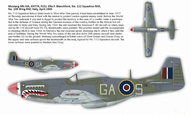 NORTH AMERICAN P-51 MUSTANG P51310