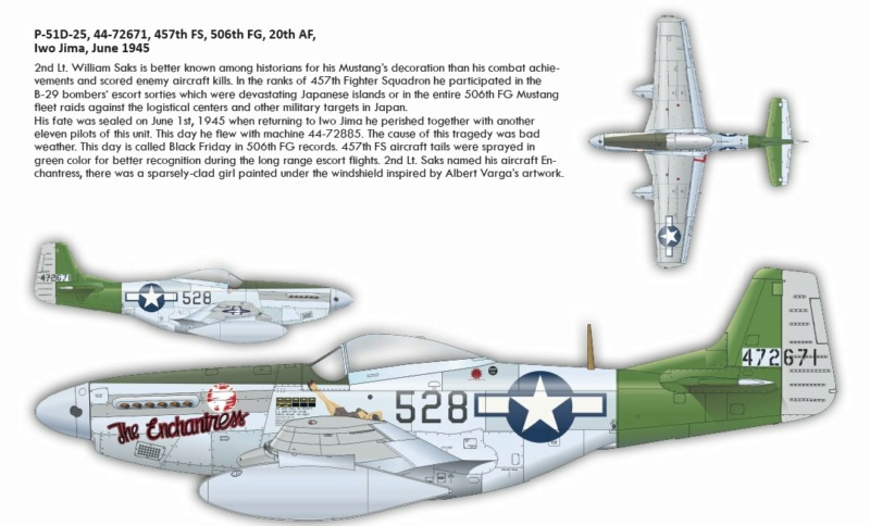 NORTH AMERICAN P-51 MUSTANG P51410