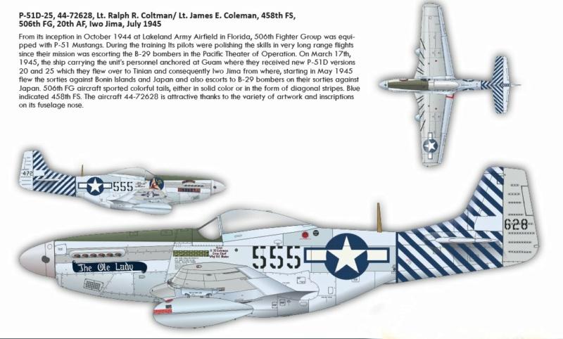 NORTH AMERICAN P-51 MUSTANG P51510