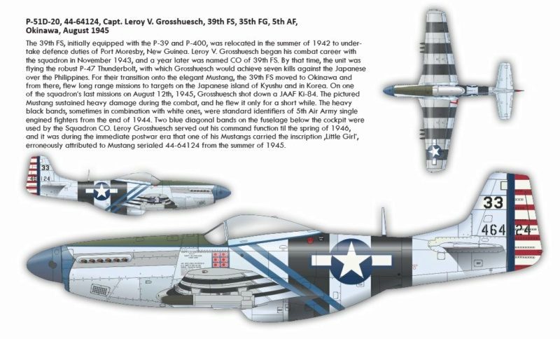 NORTH AMERICAN P-51 MUSTANG P51610
