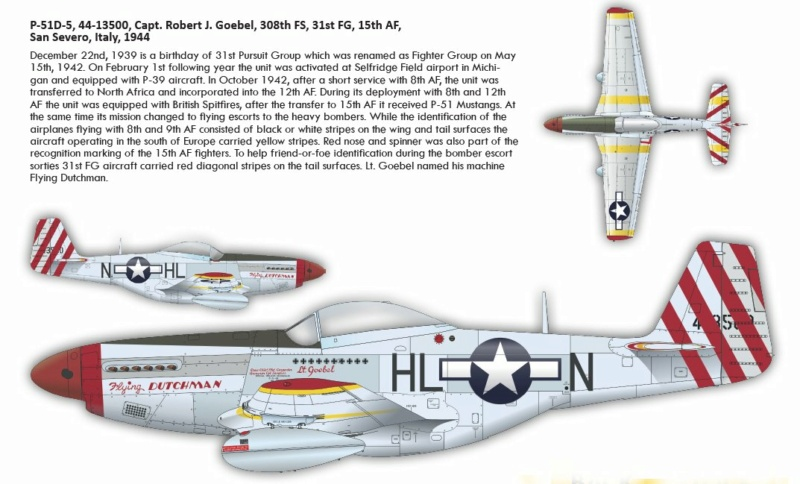 NORTH AMERICAN P-51 MUSTANG P51910