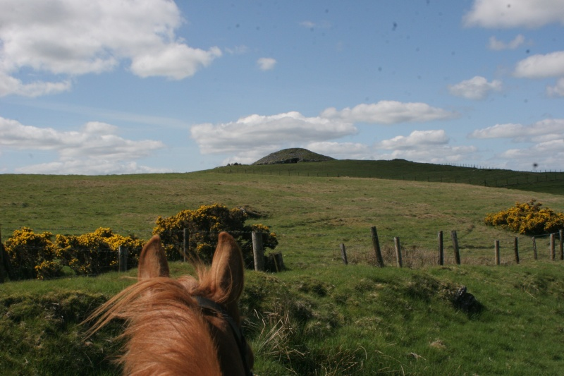 Sejours linguistiques + equestres en Irlande Trekad10