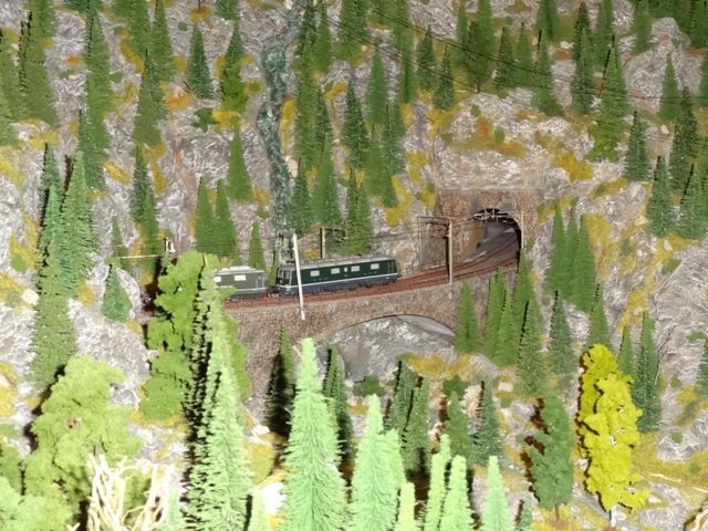 Gotthard-Modellbahn Reichelshofen Dsc03177