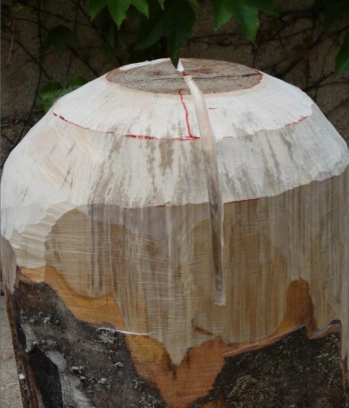 projet sculpture à la tronçonneuse 2013-032