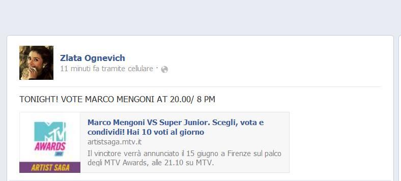 MTV Awards 2013 - Firenze 15/06/2013 19645910