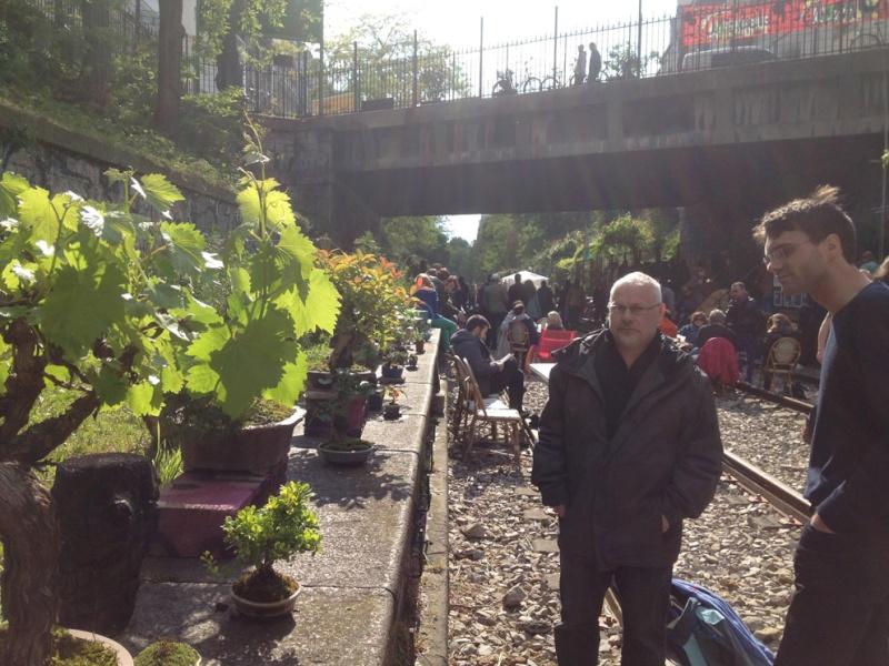 Urban bonsaïs Img_6816