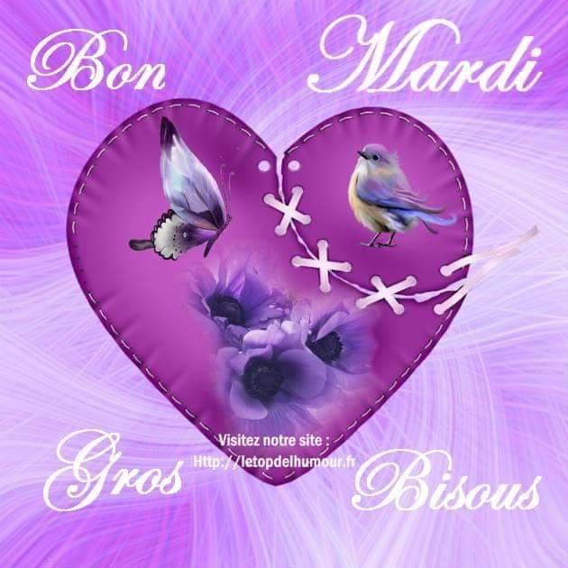 Bonjour, bonsoir..... - Page 34 49855510