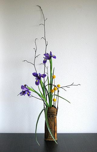 ART DU JARDIN jardins d'exception, fleurs d'exception 1_1_1428