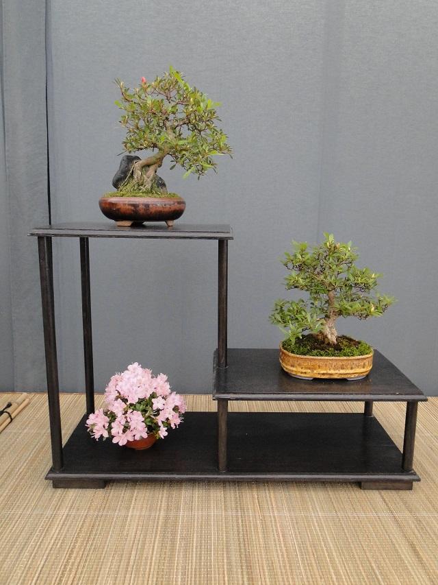 re:satsuki flower trophy 2013  02310