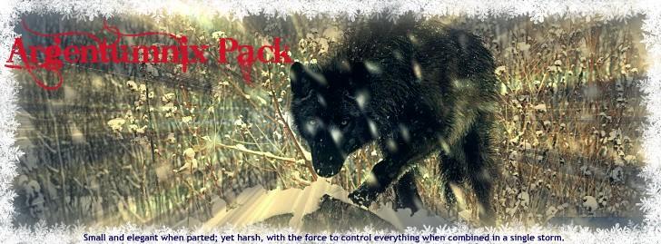 Pack Banner Argent10