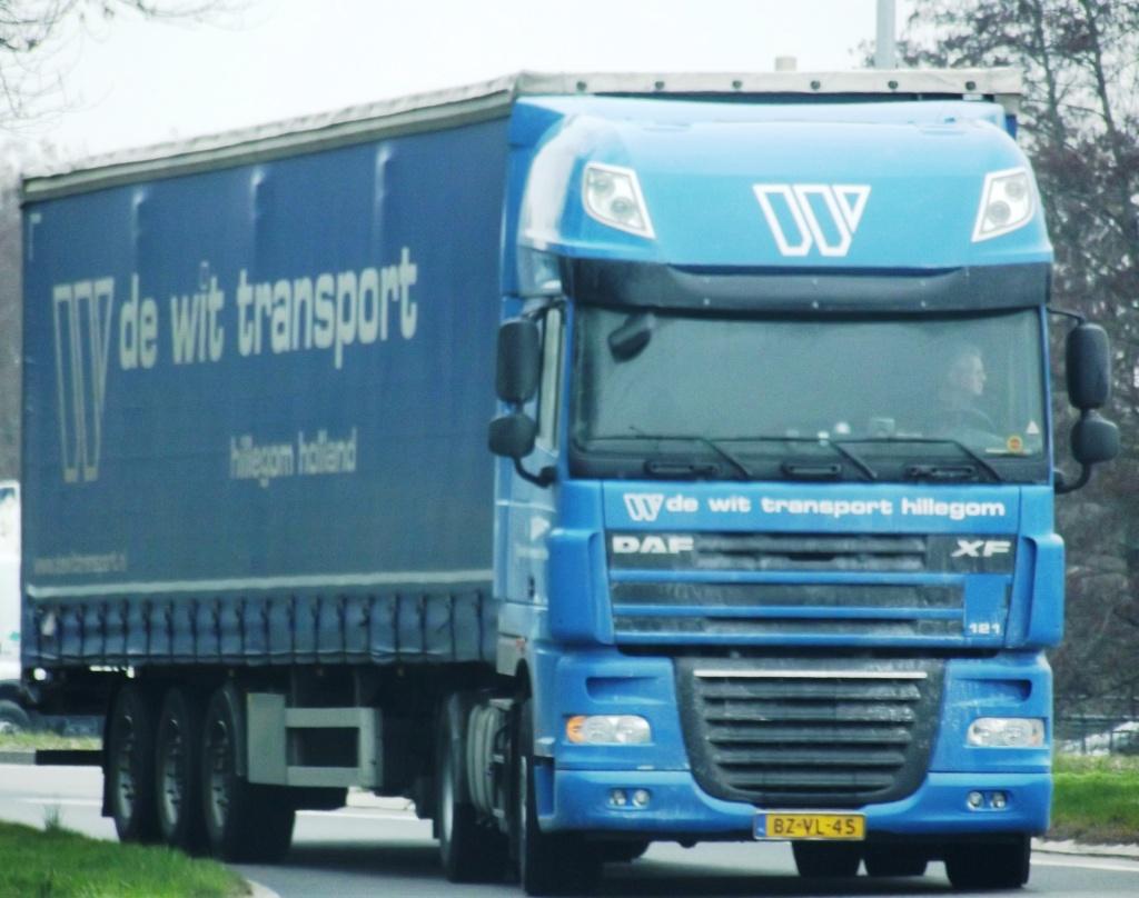 De Wit Transport (Hillegom) Photo296