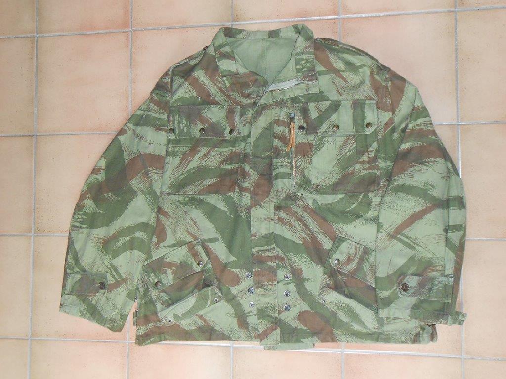 Un peu de camouflage Léopard - Page 6 Dscn6711