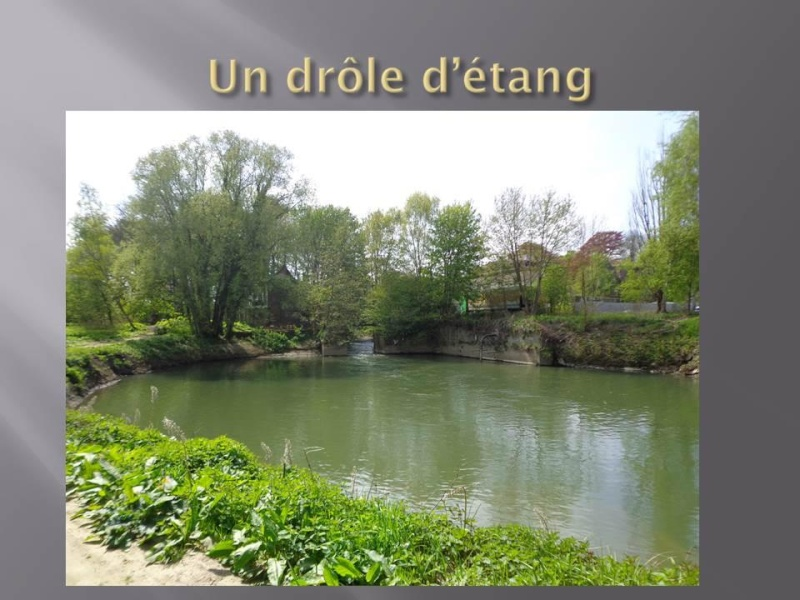 Canal Bruxelles-Charleroi  partie Flamande Halle(Lembeek) - Sint-Pieters-Leeuw - EV5 - Eurovelo 5 - F20 - Page 2 24904010