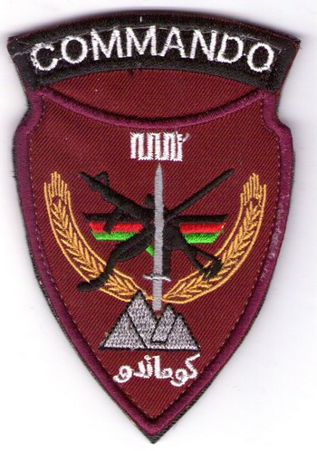 Afghan National Army Commando Patches - Page 5 Img74210