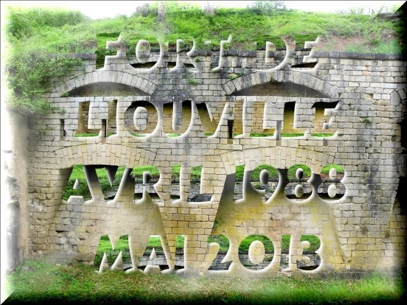 FORT DE LIOUVILLE MAI 2013 Imgp1711