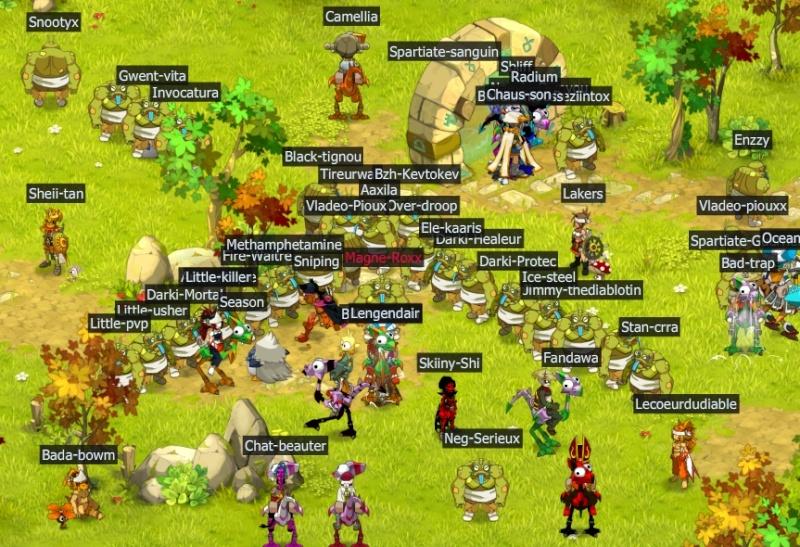 40 crapauds zaap village Cp110