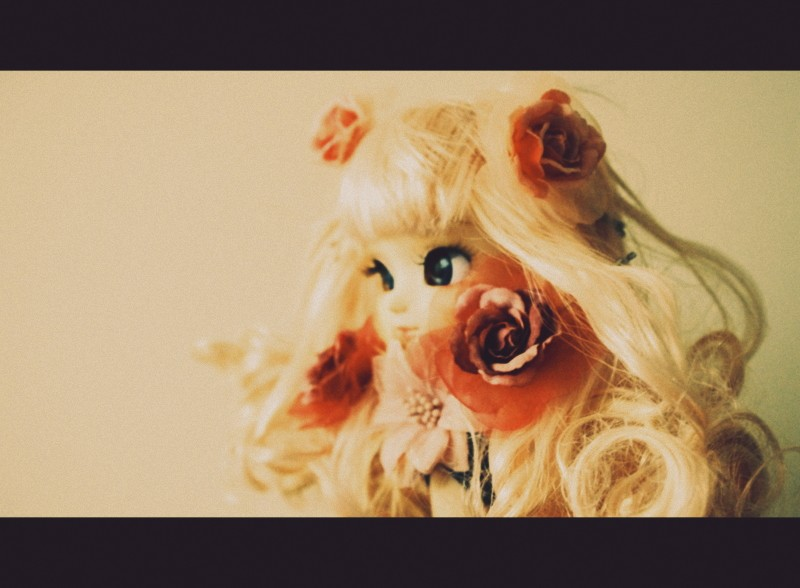 Capharnaüm ★ Présentation ~ Imgp9610
