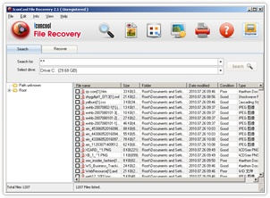 IconCool File Recovery 2.1 Build 100701 Fm10