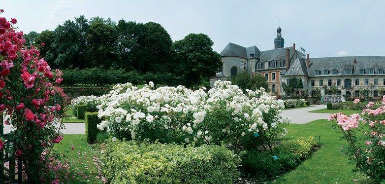 Et si je vous parle un peu de la Picardie en photos . Image110