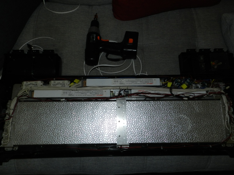 """RSM 250 """"legolas59600"""" Dscn1818"""