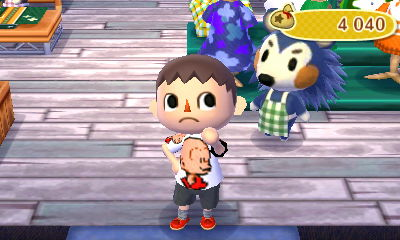 Animal Crossing New Leaf: vos aventures en photo Hni_0011