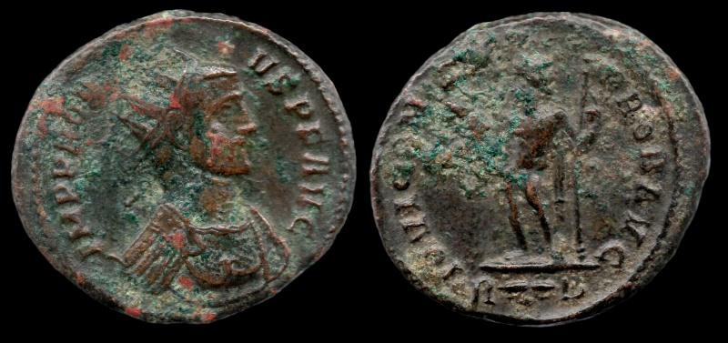 Mes nouvelles rentrées du jour : Aureliani pour LYON 109-pr11