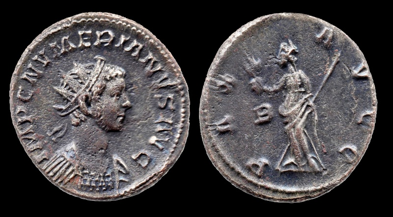 carus - Tacite, Florien, Carus, Numérien, Carin 31-num10